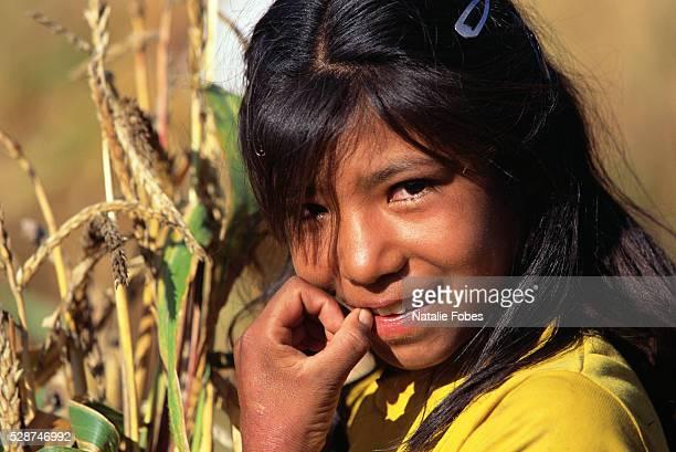a tarahumara girl smiling - tarahumara fotografías e imágenes de stock