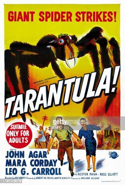 John Agar Mara Corday on Australian poster art 1955