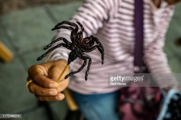 tarantula shish kebab - exotismo fotografías e imágenes de stock