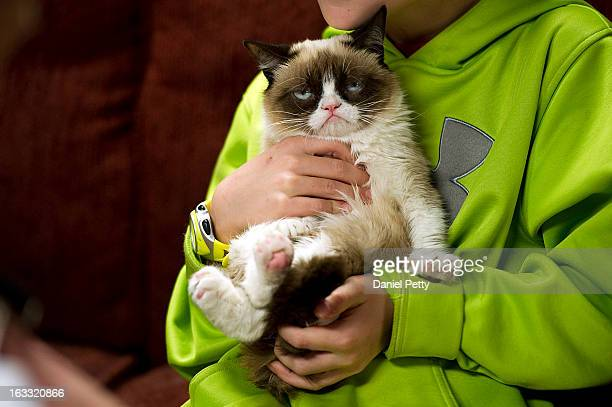"""Tardar Sauce, better known by her viral Internet meme name """"Grumpy Cat,"""" appears during a press event during the 2013 SXSW Music, Film + Interactive..."""