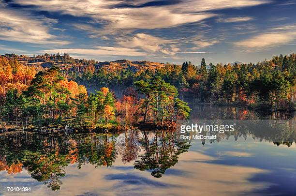 tarn hows in autumn - lake district stockfoto's en -beelden