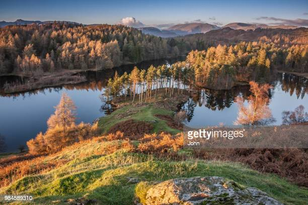 tarn hows in the lake district national park, england. - lake district autumn stock pictures, royalty-free photos & images