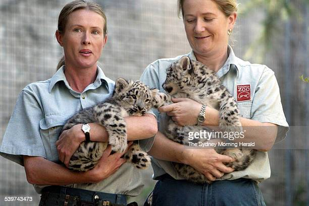 Taronga Zoo welcomes 2 snow leopard cubs that were born in the zoo's breeding program They are pictured with their keepers Louise Ginman on the left...