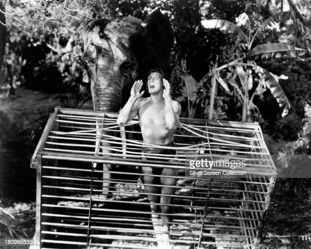Tarzan played by Johnny Weissmuller is helped by an elephant to escape from a steel cage in 'Tarzan Escapes' directed by Richard Thorpe 1936