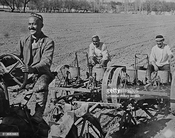 Tashkent , Uzbekistan, USSR . Planting cotton. Navai collective farm.