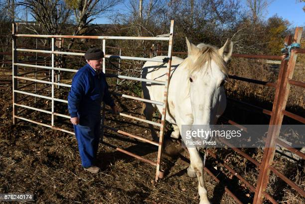 Tasio pictured with his horse near of the small village of Fuentelfresno north of Spain Tasio 84 yearsold is one of the last inhabitants of this...