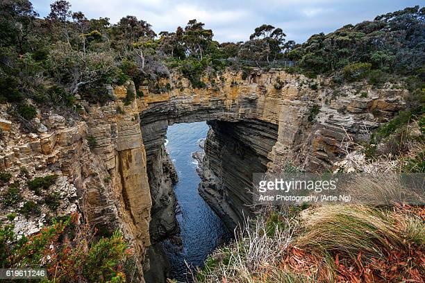 tasman arch and littoral chasm in tasman national park, tasman peninsula, tasmania, australia - arch stock pictures, royalty-free photos & images