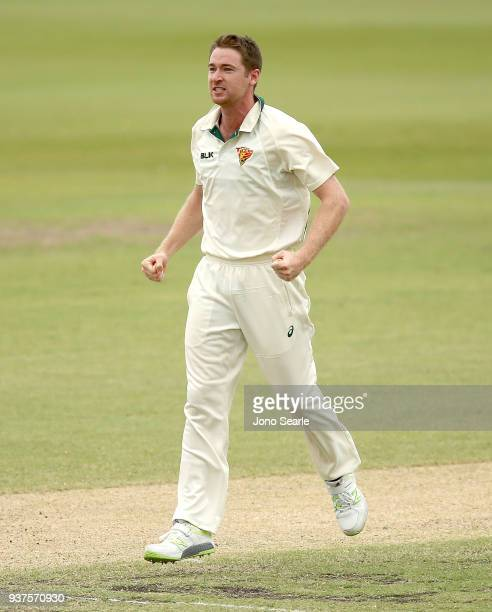 Tasmania bowler Tom Rogers celebrates taking a wicket during day three of the Sheffield Shield final match between Queensland and Tasmania at Allan...