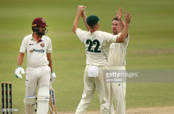 Tasmania bowler Tom Rogers celebrates taking the wicket of Joe Burns with team mates during day three of the Sheffield Shield final match between...
