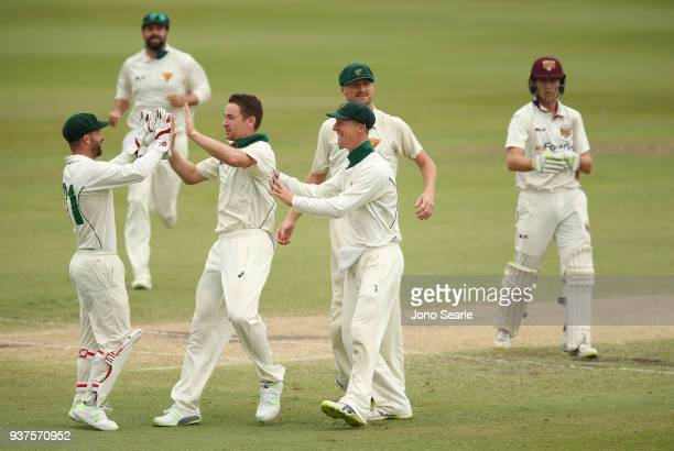 Tasmania bowler Tom Rogers celebrates taking the wicket of Queensland player Marnus Labuschagne during day three of the Sheffield Shield final match...