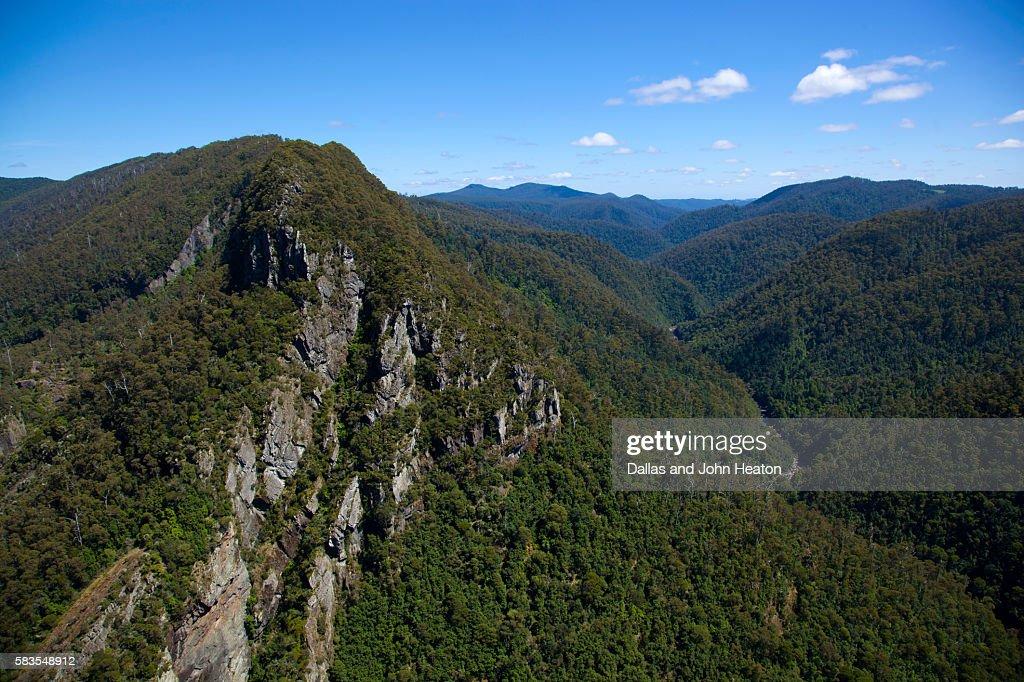 Tasmania, Leven Canyon : Stock Photo