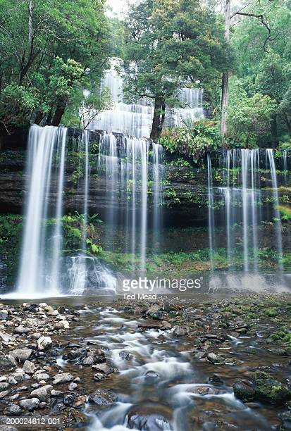 tasmania, mount field national park, russell falls - ted russell stock photos and pictures