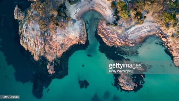 tasmania - tasmania stock pictures, royalty-free photos & images
