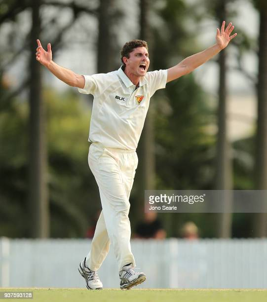 Tasmania player Simon Milenko appeals to the umpire during day three of the Sheffield Shield final match between Queensland and Tasmania at Allan...