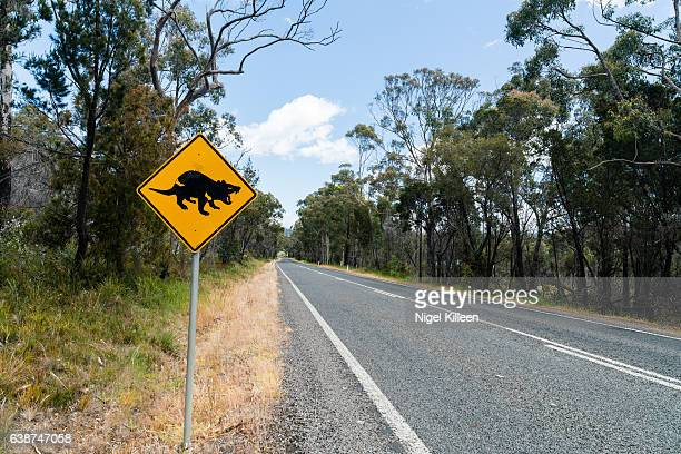 tasmanian devil road sign, tasmania, australia - demonio de tasmania fotografías e imágenes de stock
