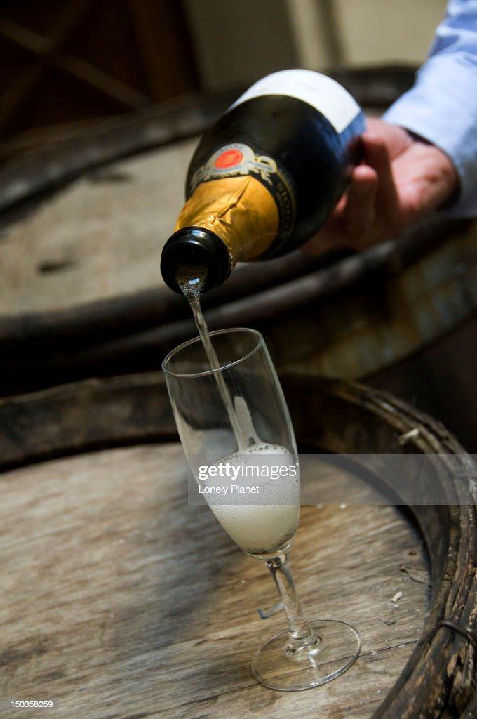 Tasting champagne at O Chateau Paris Wine Tasting house. : Stock Photo