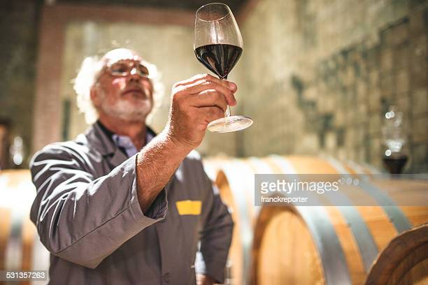 tasting my product - viniculture stock pictures, royalty-free photos & images