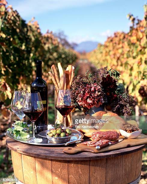 tasting platter in vineyard - snag tree stock pictures, royalty-free photos & images