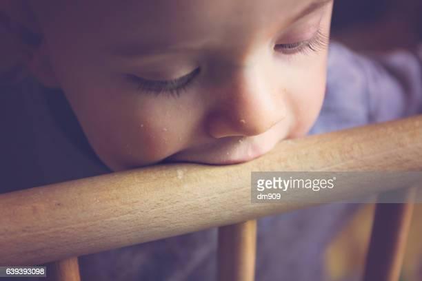 tasting the wood