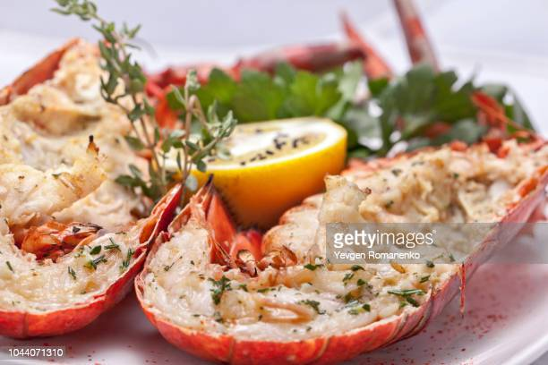 tasty lobster - red lobster restaurant stock pictures, royalty-free photos & images