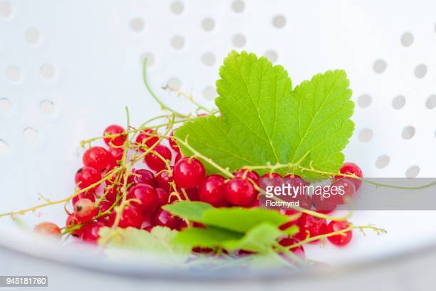 Tasty red berries with green leaves