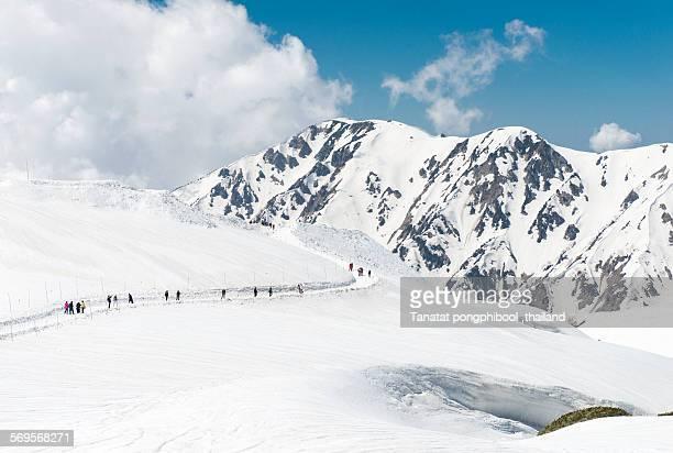 Tateyama Kurobe Alpine route snow