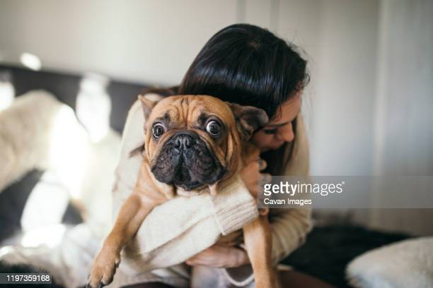 a tattooed woman hugging her cute puppy. happy moment between pe - haustier stock-fotos und bilder