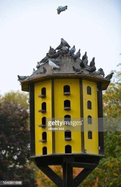 Taubenhaus stock photos and pictures getty images - Stadtgarten dortmund ...
