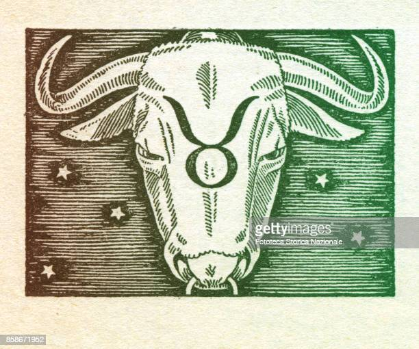 Taurus is the second sign of the zodiac of western astrology fixed and of earth from 20 April to 20 May Colored version of woodcut of 1942 Italy...