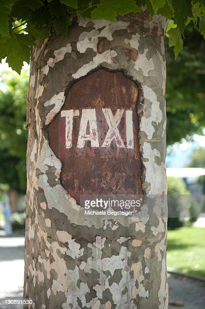 Taxi, engraved on a trunk