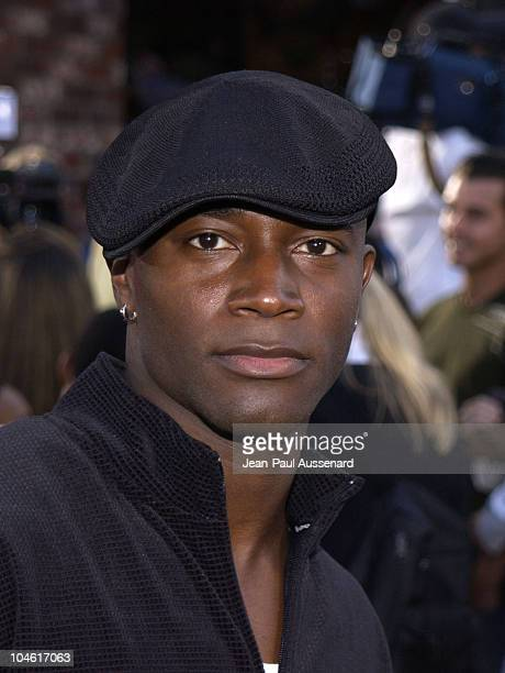 Taye Diggs during 'XXX' Premiere in Los Angeles at Mann's Village in Westwood California United States