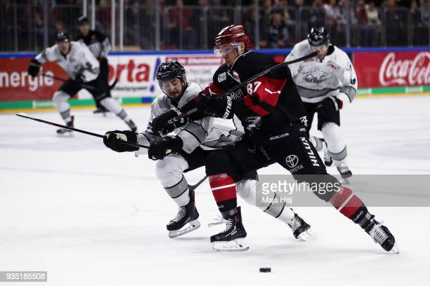 Taylor Aronson of Thomas Sabo Ice Tigers and Philip Gogulla of Koelner Haie battle for the puck during Koelner Haie and Thomas Sabo Ice Tigers DEL...