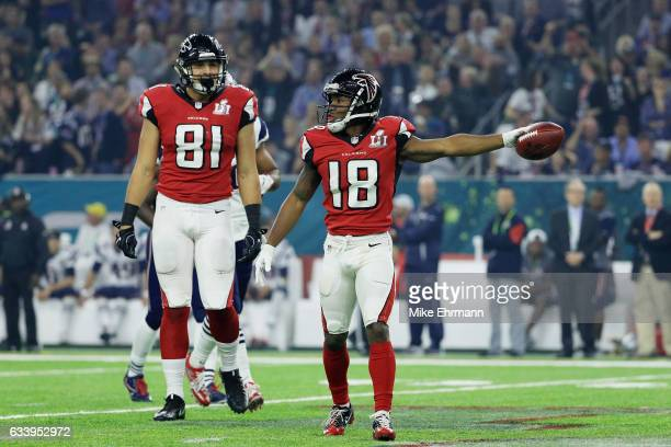 Taylor Gabriel of the Atlanta Falcons reacts after a first down against the New England Patriots in the third quarter during Super Bowl 51 at NRG...