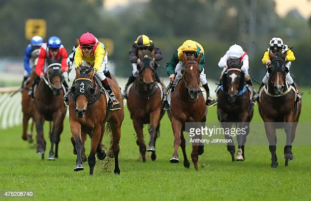 Taylor Marshall rides Vergara to win race 7 The Schweppes Handicap during Sydney Racing at Rosehill Gardens on May 30 2015 in Sydney Australia