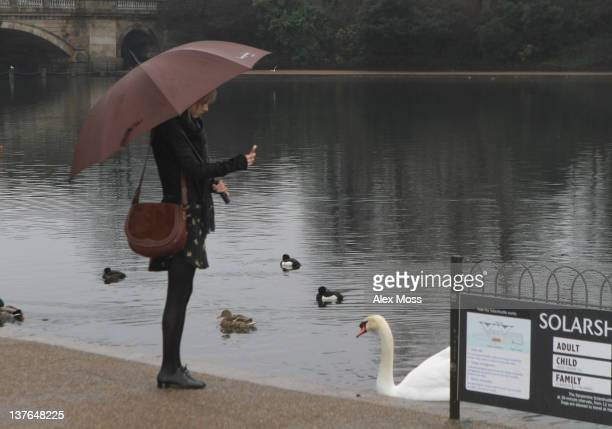 Taylor Swift is Seen in Hyde Park while the visiting Princess Diana Memorial Fountain on January 24 2012 in London England
