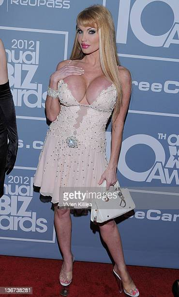 Taylor Wane attends the 10th Annual XBIZ Awards at The Barker Hanger on January 10 2012 in Santa Monica California
