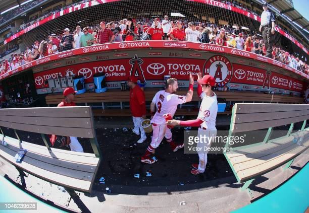 Taylor Ward of the Los Angeles Angels of Anaheim is congratulated by teammate Shohei Ohtani in dugout after Ward hit a walkoff home run during the...