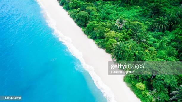 tayrona national park drone view - kolumbien stock-fotos und bilder