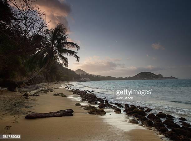 tayrona national park , santa marta , department of magdalena , colombia - alex saberi stock pictures, royalty-free photos & images