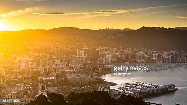 te aro and wellington harbor in golden sunlight - wellington new zealand stock photos and pictures