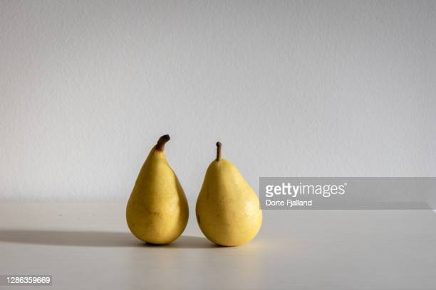 te whole yellow pears on a white background - dorte fjalland stock pictures, royalty-free photos & images