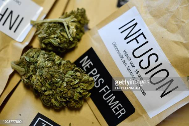 Tea bags containing cannabis flowers that were meant to be sold as herbal tea are pictured at a police station in Brest western France on August 1...