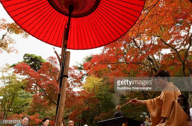A tea ceremony master makes green tea during the outdoor tea ceremony at Zuihoji Temple Park on November 3 2011 in Kobe Japan The tea ceremony began...
