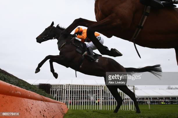 Tea For Two ridden by Lizzie Kelly jumps the second from last fence alongside Cue Card ridden by Paddy Brennan on their way to winning the Betway...