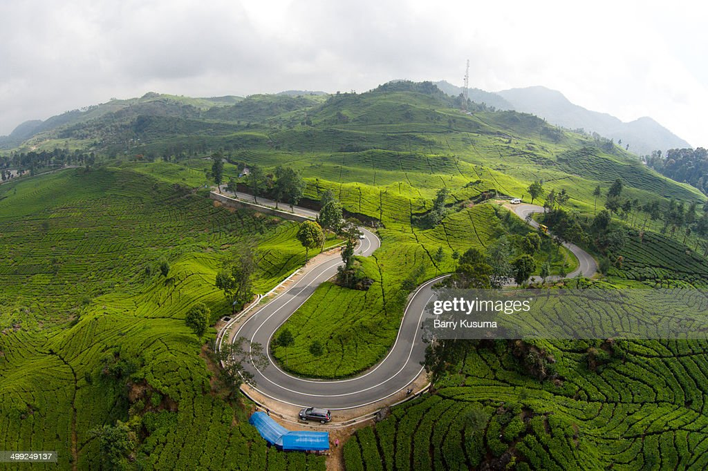 Tea Garden Walini Ciwidey West Java Stock Photo | Getty Images