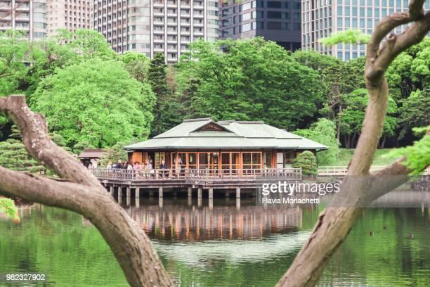 tea house on hamarikyu gardens - ティールーム ストックフォトと画像