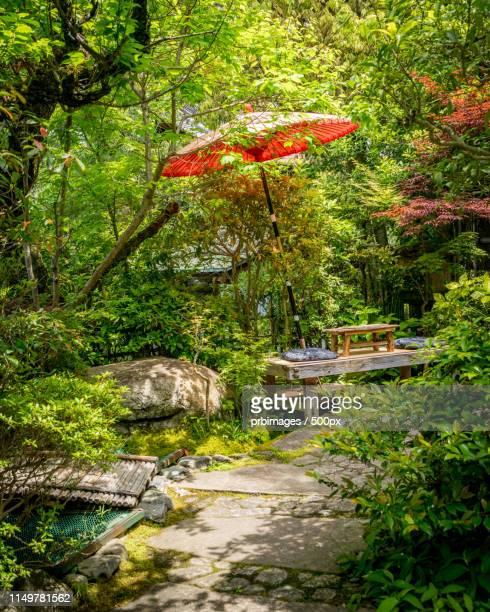 tea house restaurant garden - 和室 ストックフォトと画像
