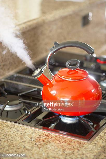 Tea kettle steaming on cooktop