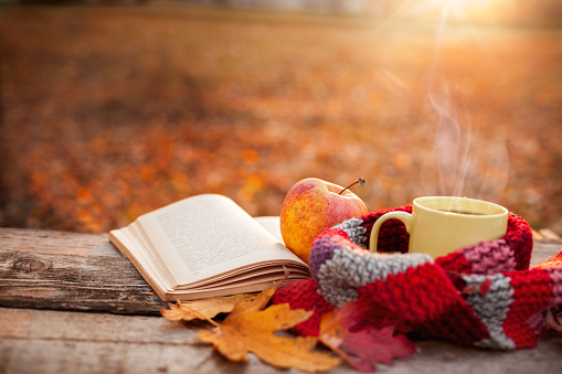 Tea mug with warm scarf open book and apple 846775222