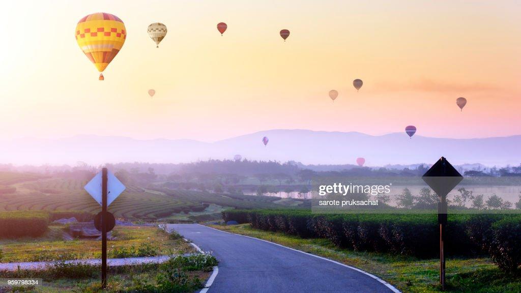 Tea Plantation and hot air balloon in morning . Change Ri , North of Thailand. : Stock-Foto